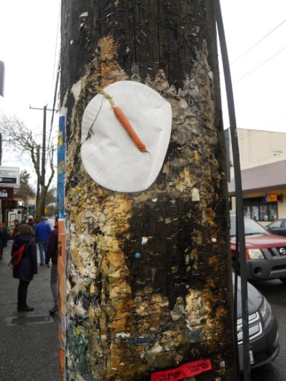 That is an actual carrot stapled to a telephone pole