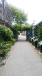 more walkways